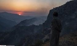 مهار آتش سوزی در منطقه «بوزین و مرخیل» پاوه