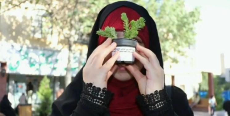 روایت حرکت خودجوش بچهمسلمانها/ اینجا حجاب با گل و هدیه ترویج میشود+ فیلم و عکس