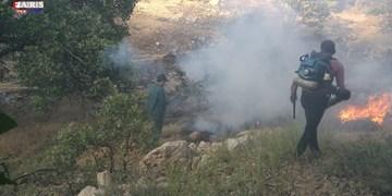 مهار آتشسوزی در ۹ هکتار از مراتع بکر بخش تختسلیمان تکاب