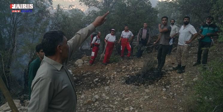 اطفای آتش در جنگل «دلی کوخدان» الگویی از همدلی مردم و دولتیها+تصویر و فیلم