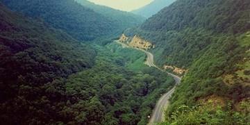 فیلم/جنگلهای ارسباران بهشت گمشده ایرانزمین
