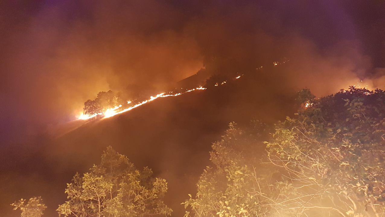 13990413000354 Test NewPhotoFree - محیط بانی که سه شبانهروز در آتش «مرخیل» بود+ فیلم و تصاویر