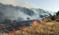 آتشسوزی منطقه «قره تیکانلو»مهار شد