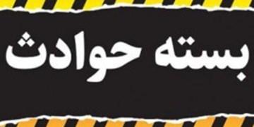 بسته خبری حوادث فارس/ از رفع تصرف ۸۰ میلیارد ریالی اراضی ملی در لارستان تا آتشسوزی در فسا
