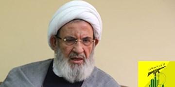 حزبالله اهانت روزنامه سعودی به مرجعیت شیعیان در عراق را محکوم کرد