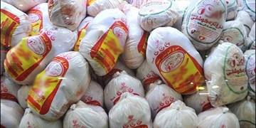 توزیع ضربتی ۱۰۰ تن گوشت مرغ در مازندران