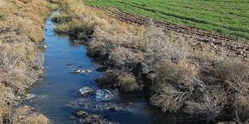آبیاری زمین های کشاوری با فاضلاب، بازی با سلامت مردم است