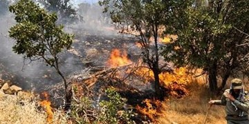 حومه غربی دهدشت در محاصره آتش+فیلم