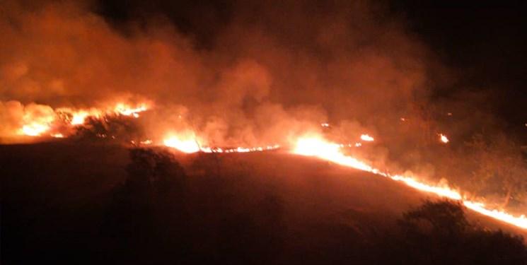 آتش بر جان جنگلهای شالو و منگشت ایذه