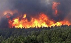 کوه نیر در آتش میسوزد/توصیه به منابع طبیعی کهگیلویه و بویراحمد+تصویر
