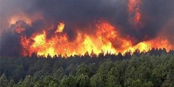 فیلم|جسم خسته امدادگران پس از مهار آتش خاییز