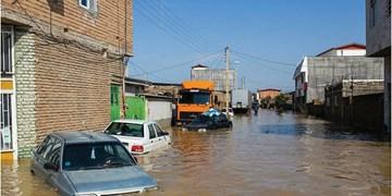 اختصاص 400 میلیارد ریال تسهیلات به واحدهای خسارت دیده از سیل روستاهای ایلام