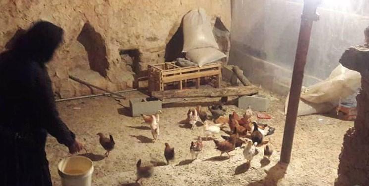 هیأتالرضاییها گنج به روستاها بُردند/ اشتغالزایی برای ۱۵۰۰ خانواده