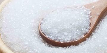 تامین شکر از طریق واردات و تولید داخل/ تمهیدات لازم برای تامین شکر انجام شده است