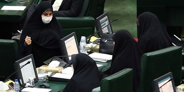 اختصاصی| دولت لایحهای «صیانت، کرامت و تأمین امنیت بانوان» ارائه نکند، مجلس طرح می دهد