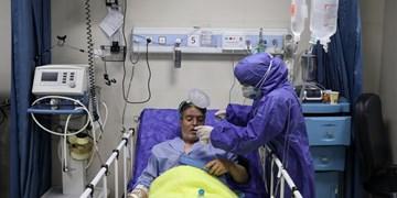 ادامه روند افزایش شیوع کرونا در استان اردبیل/ ۲۳۰ بیمار بستری هستند