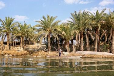 مردم روستاهای شادگان معیشت خود را از طریق صیادی و دامداری در کنار این تالاب میگذرانند.