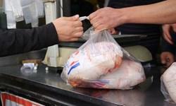 قیمت مرغ زنجان از کل کشور 2 هزار تومان ارزانتر است/ ضرر 30 میلیونی کشتارگاهها به صورت روزانه