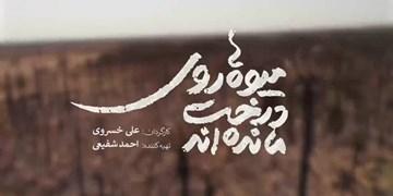 «میوهها روی درخت ماندهاند»، مستندی که دولتمردان باید ببینند