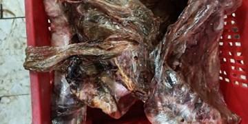 سرنوشت نامعلوم حدود چهار تن گوشت فاسد فروشگاه زنجیرهای در رشت!