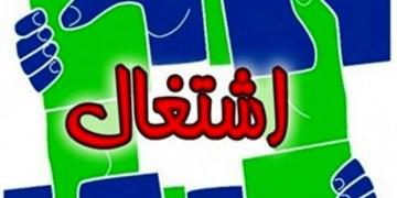 138 مددجوی بهزیستی در زنجان صاحب شغل شدند