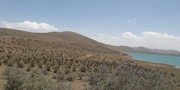 اختصاص 1200 هکتار از عرصههای منابعطبیعی استان به جنگلکاری و بذرکاری