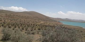 ۷۵ درصد مراتع و جنگلهای خراسان شمالی حفاظت میشود