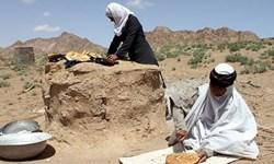 عشایر استان مرکزی سالانه ۵ هزار تن محصولات گوشتی تولید میکنند