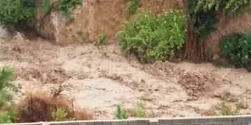 رانش زمین در بستر رودخانه روستای پاسند/ مسؤولان پای کار بیایند+ عکس و فیلم