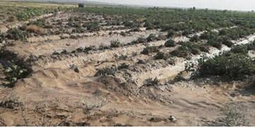 خسارت میلیاردی سیلاب در میامی+ تصاویر