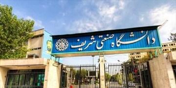 نامه تشکل دانشجویی مادران شریف به رئیس مجلس/ شرایط عبور از هشدار جمعیتی را محقق کنید