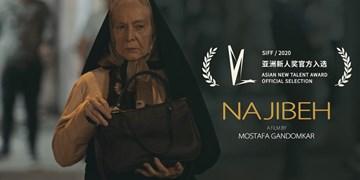 حضور ۲ فیلم ایرانی در بیست و سومین جشنواره شانگهای