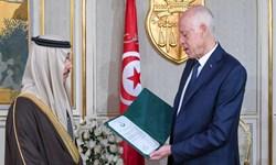 درخواست از رئیس جمهور تونس برای پایان دادن به دخالتهای عربستان و امارات