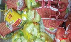 توزیع ۳۰۰ بسته معیشتی در روستاهای زردلان هلیلان
