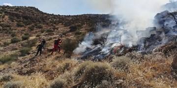 آتشسوزی عمدی در عرصههای دراک مهار شد
