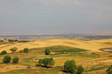 مزارع گندم روستای قره تپه در بخش دهستان سردابه استان اردبیل