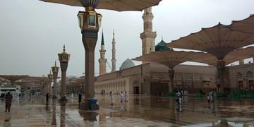 دعای زائران حرم نبوی زیر باران رحمت الهی +فیلم