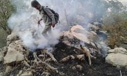 آتش در مراتع گردکی باغملک مهار شد