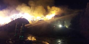 آتش سوزی گسترده در دامداری جنوب تهران