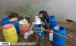 فعاليت دامداران در مراتع ييلاقی