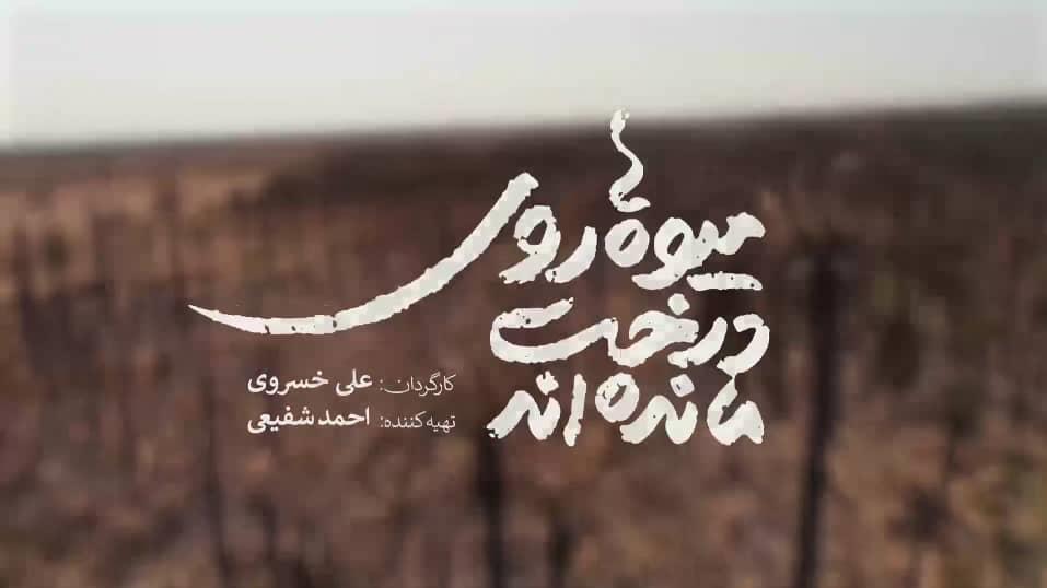 13990506000772 Test NewPhotoFree - میوه، کشاورز ایرانی، دلالیسم، سوءمدیریت و چند داستان دیگر!