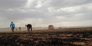 اطفای 2 فقره حریق در مزارع شهرکرد