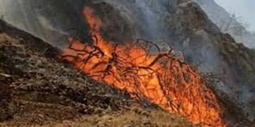 آتش دوباره به جان کوه منگشت افتاد