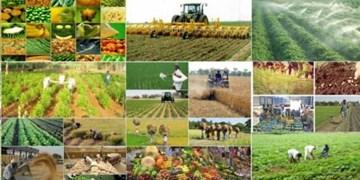 افتتاح و کلنگ زنی ۸۱ طرح بخش کشاورزی در آذربایجانشرقی