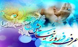 عرفه فرصتی برای بازماندگان از شب قدر/ عید قربان نماد اطاعت محض از پروردگار است