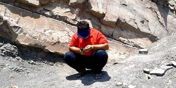 فیلم| دانشجویانی که بر قله «کوه» امتحان میدهند!/ 70 درصد «بشاگرد» فاقد اینترنت