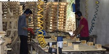 مدیرعامل بنیاد برکت: طرح «به روستا برمیگردیم» برای ۱۵هزار خانوار شغل ایجاد خواهد کرد