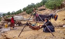 افتتاح ۳ پروژه بزرگ تأمین آب عشایر ایلام در سال جاری/ ۷۱ درصد دام استان در اختیار عشایر است