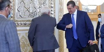 دیدار رئیس کمیته روابط خارجی دومای دولتی روسیه با وزیر امور خارجه