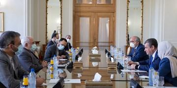 تأکید ظریف بر بروزرسانی سند همکاریهای ایران و روسیه